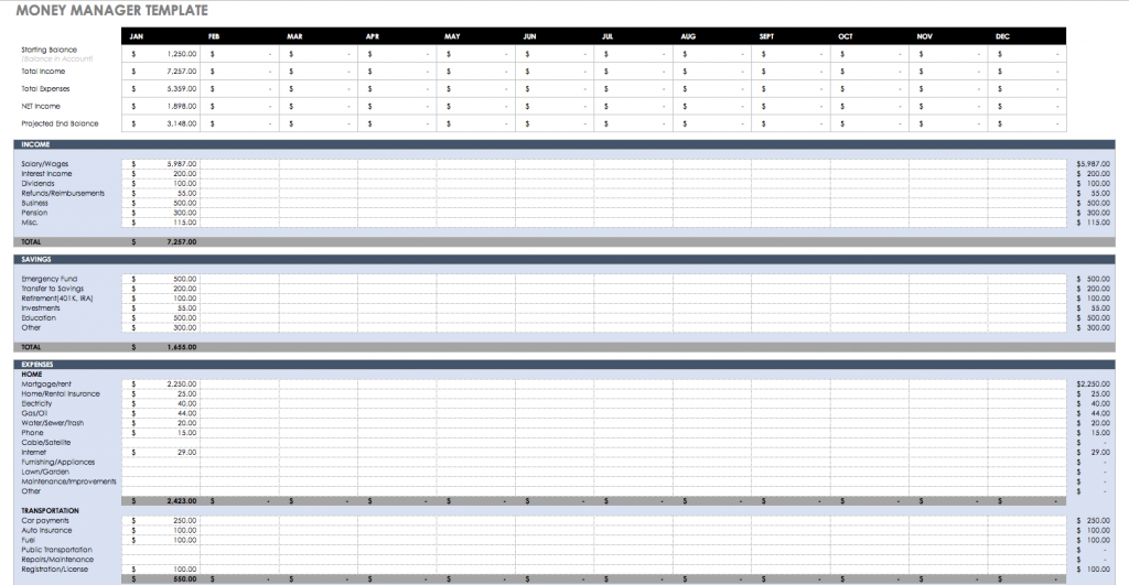 Money Manager Excel Template