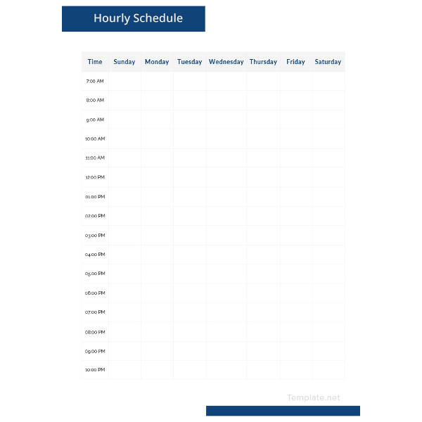 Sample Hourly Schedule Template