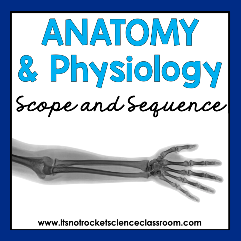 Anatomy and Physiology Worksheets High School Of Anatomy and Physiology Scope and Sequence It S Not Rocket Science