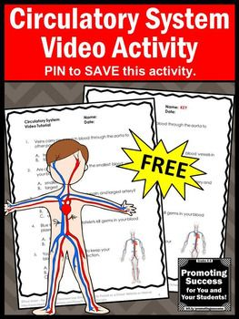 Grade 5 Science Human Body Worksheets Of Free Circulatory Human Body Systems 5th Grade Science Distance Learning Packet