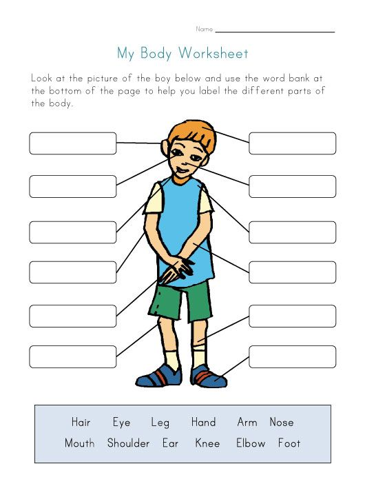 Human Body Parts Worksheets Of Body Parts Worksheet for Kids