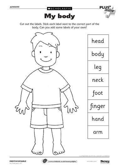 Human Body Parts Worksheets Of My Body