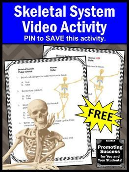 Human Body Systems Worksheets 7th Grade Free Of Free Skeletal Human Body System 5th Grade Science Distance Learning Packet Video