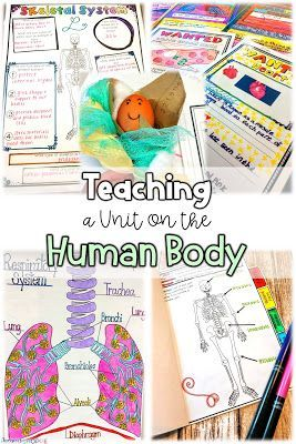 Human Body Systems Worksheets Middle School Of Teaching A Unit On the Human Body Systems