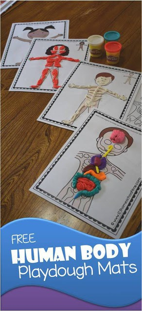 Human Body Worksheets for 6th Grade Of Free Human Body Playdough Mats