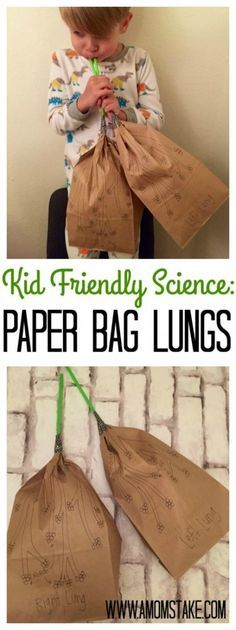 Human Body Worksheets Year 5 Of Kid Friendly Science Paper Bag Lungs