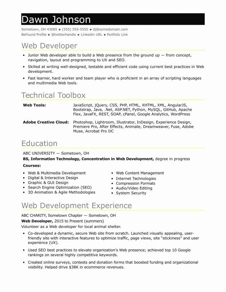 java developer resume of entry level puter programmer resume beautiful sample resume for an