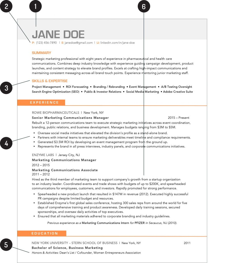 Professional Resume Templates Of What Your Resume Should Look Like In 2019