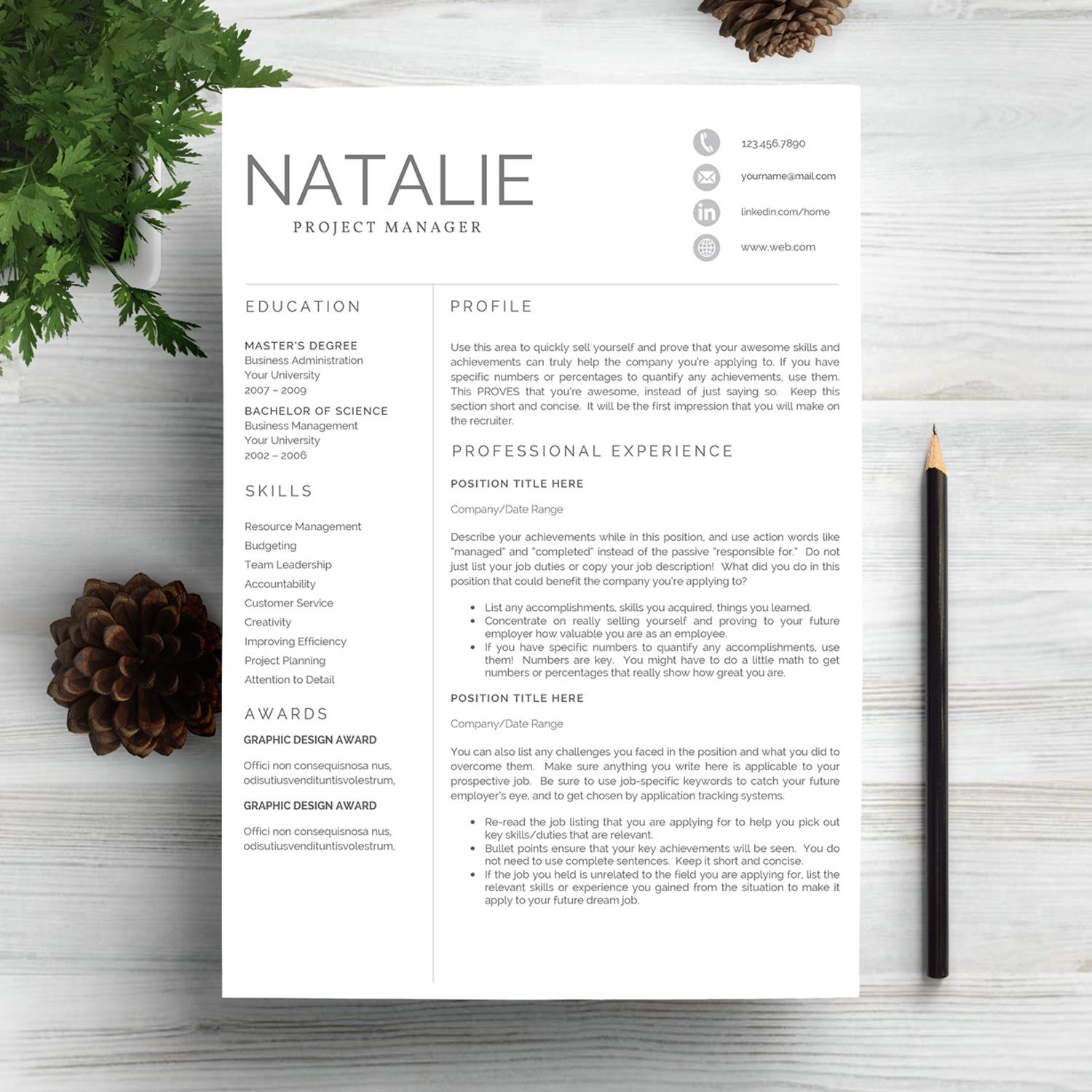 Resumes for Project Managers Of Professional Resume Template for Project Manager More