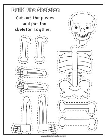 Worksheet On the Human Body Of Human Body Worksheets Itsybitsyfun